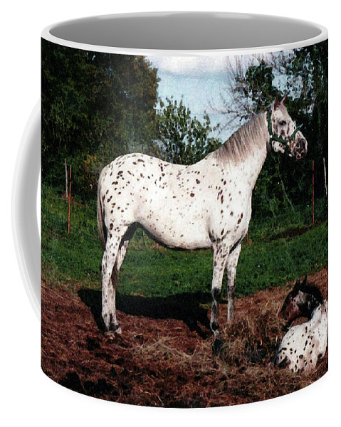 Appaloosa Coffee Mug featuring the painting Mom Watches Over by Shere Crossman