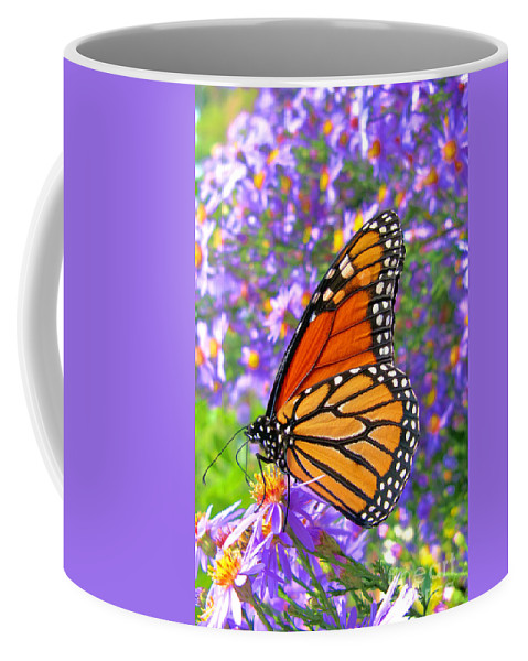 Butterfly Coffee Mug featuring the photograph Monarch Butterfly by Olivier Le Queinec