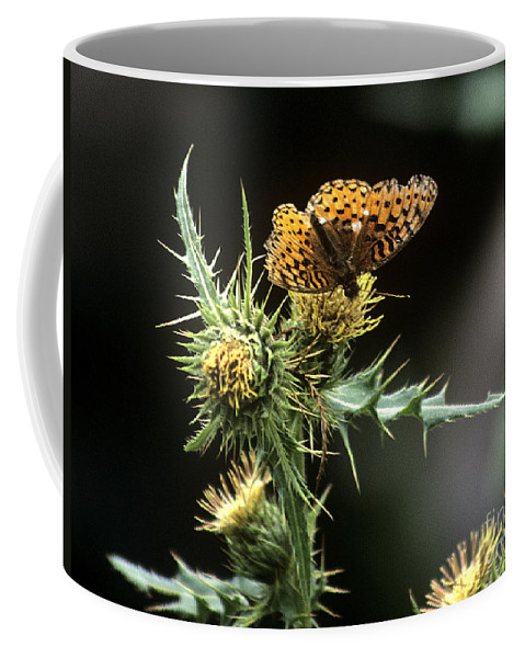 Butterfly Coffee Mug featuring the photograph Monarch On Thistle by Kathy McClure