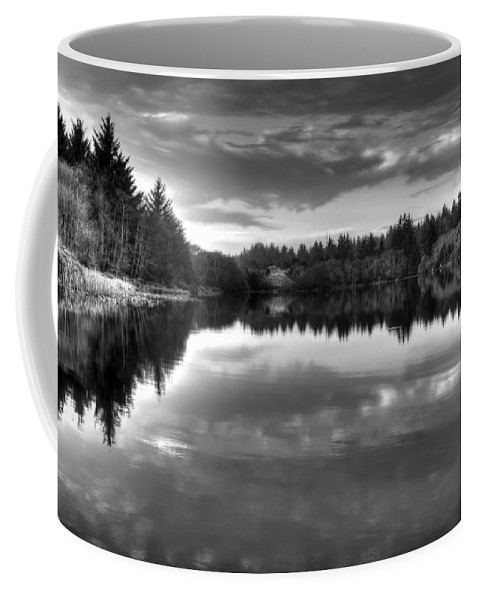 Landscape Coffee Mug featuring the photograph Moody Moment by Anita Cumbra