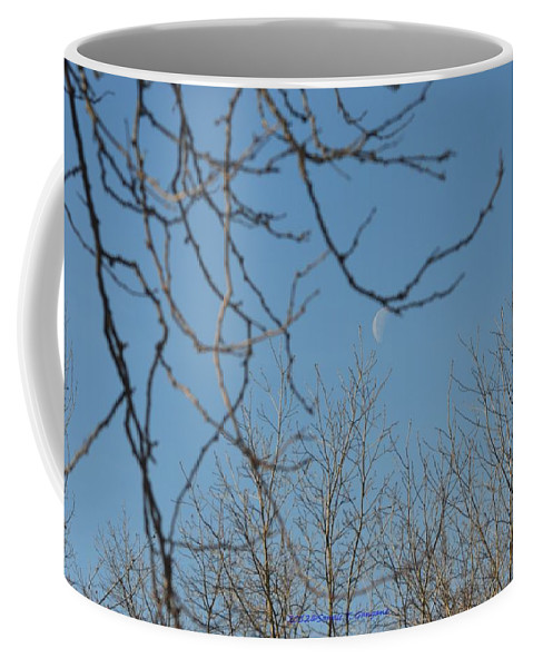 Moon In Blue Coffee Mug featuring the photograph Moon On Treetop by Sonali Gangane