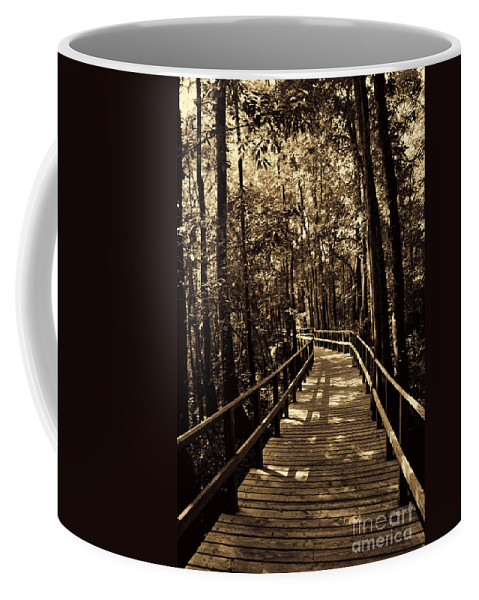 Swamp Bridge Coffee Mug featuring the photograph Moores Creek Battlefield Nc Swamp Walk by Tommy Anderson