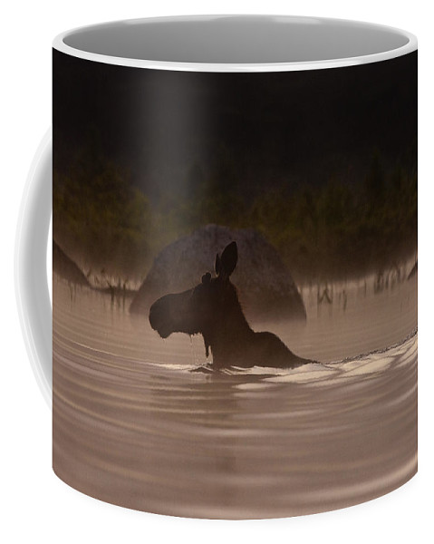Moose Coffee Mug featuring the photograph Moose Swim by Brent L Ander