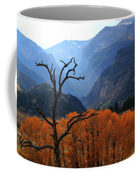 Moraine Park Coffee Mug featuring the photograph Moraine Park by Shane Bechler