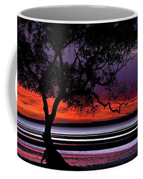 2008 Coffee Mug featuring the photograph Moreton Bay View by Robert Charity