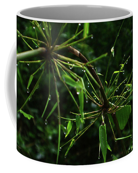 Dew Coffee Mug featuring the photograph Morning Dews by Xueling Zou