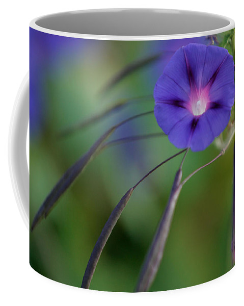 New England Flower Photograph Coffee Mug featuring the photograph Morning Excitement by Jeff Folger