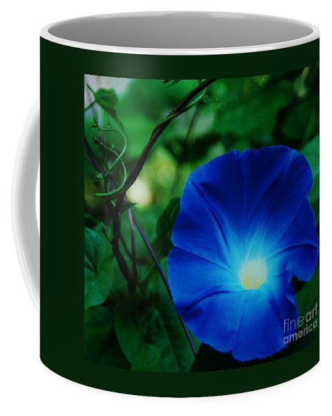 Morning Glory Art Floral Nature Macro Stock Shot Vibrant Flower Sunlit Heart Bermuda Tropical Flora Georgia Okeefe Homage Lovely Weed Canvas Print Metal Frame Poster Print Available On Greeting Cards Phone Cases Shower Curtains T Shirts Duvet Covers Pouches Throw Pillows Mugs Tote Bags And Phone Cases Coffee Mug featuring the photograph Morning Glory # 2 by Marcus Dagan