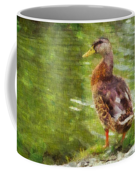 Morning Mallard Coffee Mug featuring the photograph Morning Mallard by Dan Sproul