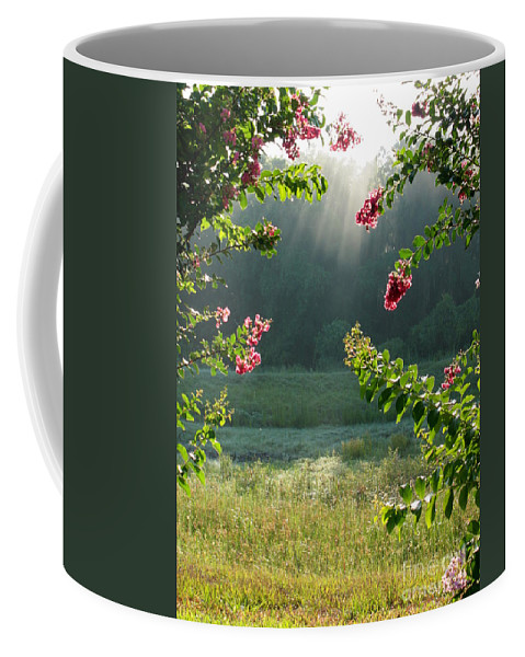 Crape Myrtle Coffee Mug featuring the photograph Morning Marsh by Carol Groenen