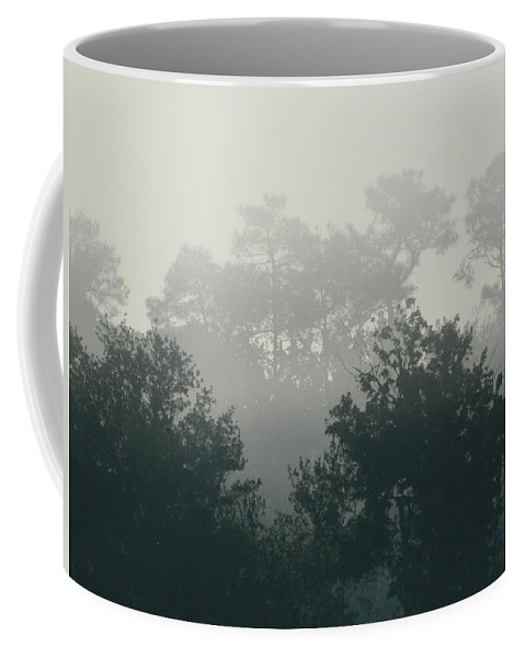Morning Coffee Mug featuring the photograph Morning Mist 1 by George Pedro