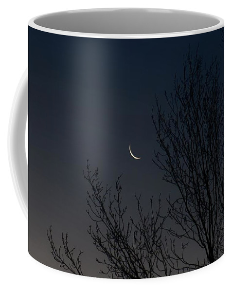 Moon Coffee Mug featuring the photograph Morning Moon by Tim Beebe