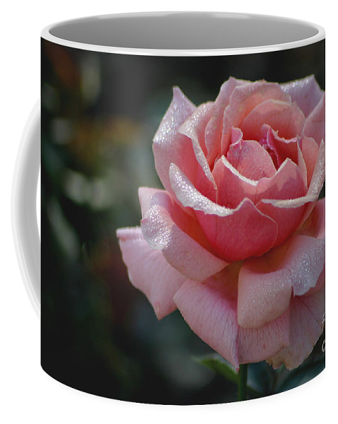 Rose Coffee Mug featuring the photograph Morning Sparkles by Living Color Photography Lorraine Lynch