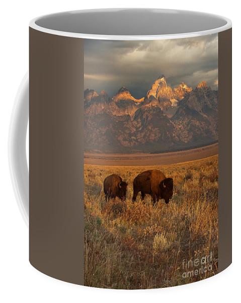 Grand Teton Coffee Mug featuring the photograph Morning Travels In Grand Teton by Sandra Bronstein