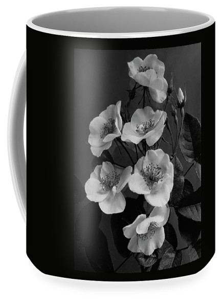 Flowers Coffee Mug featuring the photograph Moschata Alba by J. Horace McFarland