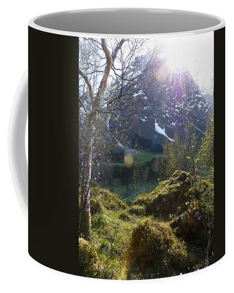 Coffee Mug featuring the photograph Moss And Sushine by Katerina Naumenko