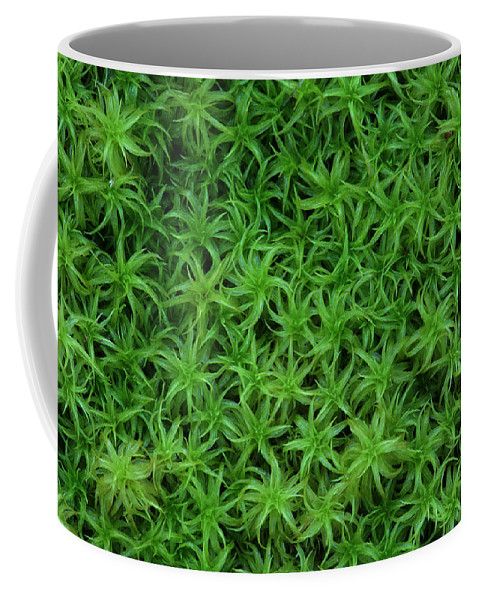 Atrichum Sp. Coffee Mug featuring the photograph Moss by Daniel Reed