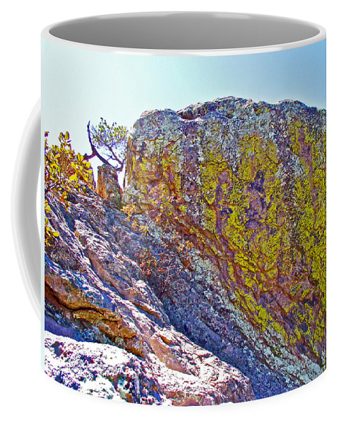 Moss On Giant Rocks Along Echo Canyon Trail In Chiricahua National Monument Coffee Mug featuring the photograph Moss On Giant Rocks Along Echo Canyon Trail In Chiricahua National Monument-arizona by Ruth Hager