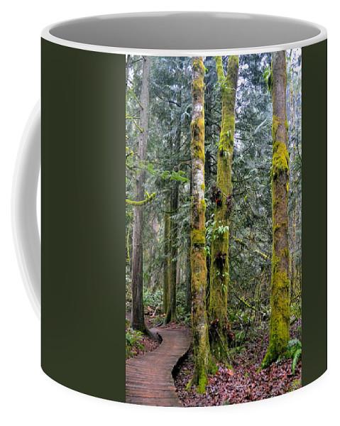 Washington Coffee Mug featuring the photograph Mossy Maze by Jody Partin