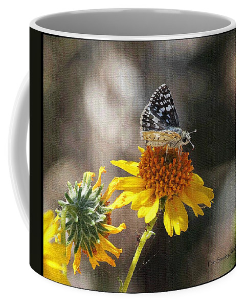 Moth And Flower Coffee Mug featuring the photograph Moth And Flower by Tom Janca