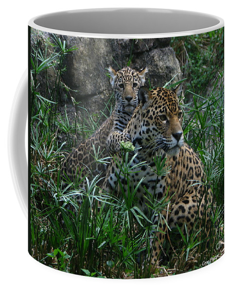 Patzer Coffee Mug featuring the photograph Mother And Child by Greg Patzer