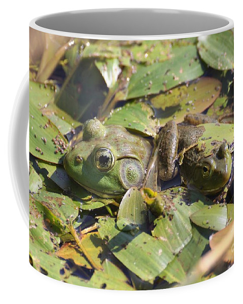 Frog Coffee Mug featuring the photograph Mother And Child Reunion by Rick Rauzi