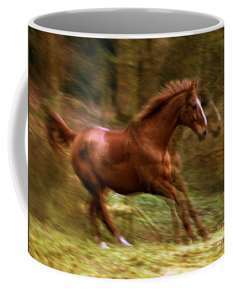 Horse Coffee Mug featuring the photograph Motion Picture by Angel Ciesniarska