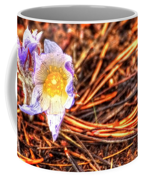 Red Coffee Mug featuring the photograph Mount Margaret Spring 14379 by Jerry Sodorff