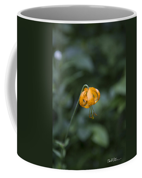 Mountain Coffee Mug featuring the photograph Mountain Flower by Charlie Duncan