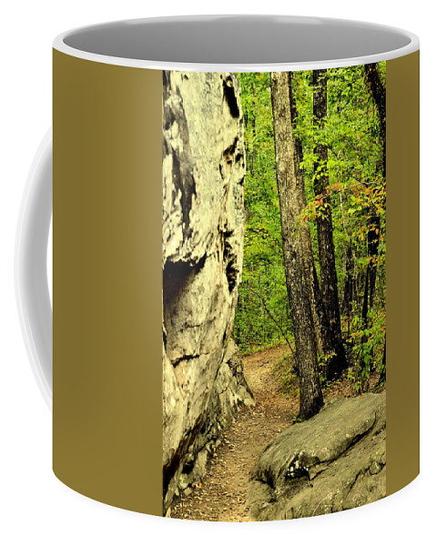 Mountain Trail Coffee Mug featuring the photograph Mountain Trail by Maria Urso