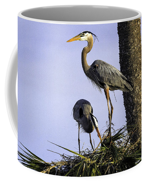 Birds Coffee Mug featuring the photograph Mr. And Mrs. Heron by Fran Gallogly