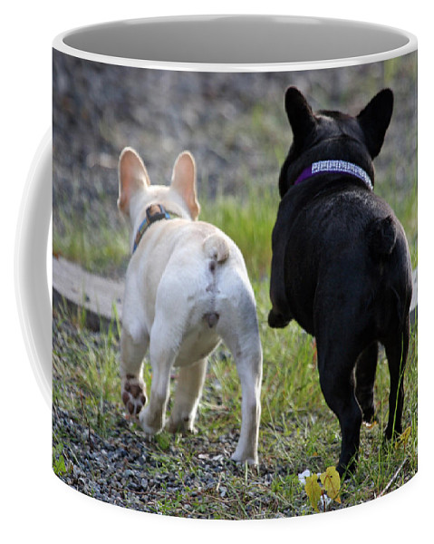 Frenchie Coffee Mug featuring the photograph Ms. Quiggly And Buddy French Bulldogs by Tap On Photo