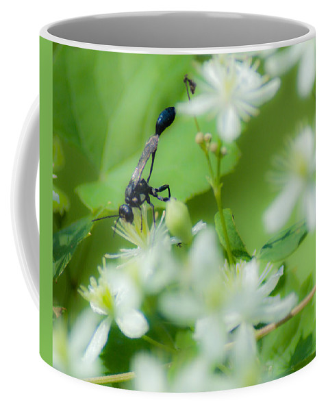 Optical Playground By Mp Ray Coffee Mug featuring the photograph Mud Dauber In The Flowers by Optical Playground By MP Ray