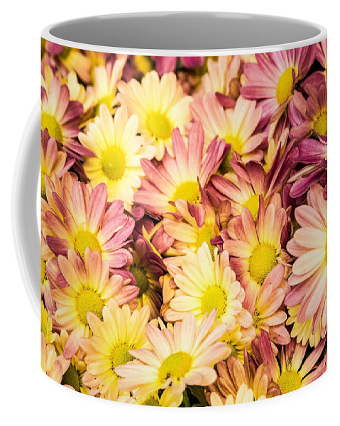 Daisies Coffee Mug featuring the photograph Multi-colored Daisies by Onyonet Photo Studios