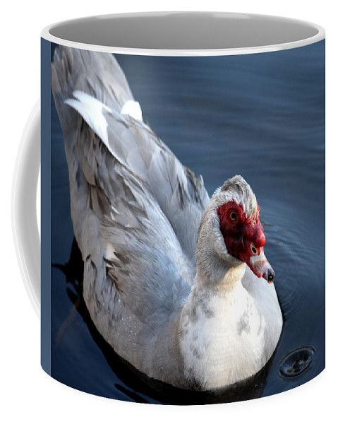 Muscovy Study 2013 Coffee Mug featuring the photograph Muscovy Study 2013 by Maria Urso
