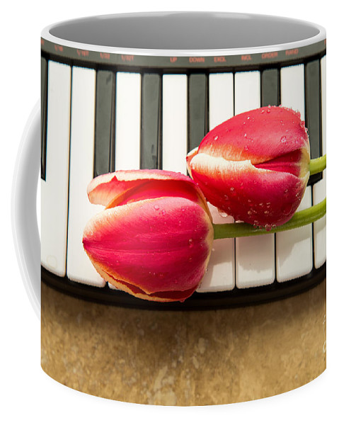 Floral Coffee Mug featuring the photograph Musical Interlude by Edward Fielding
