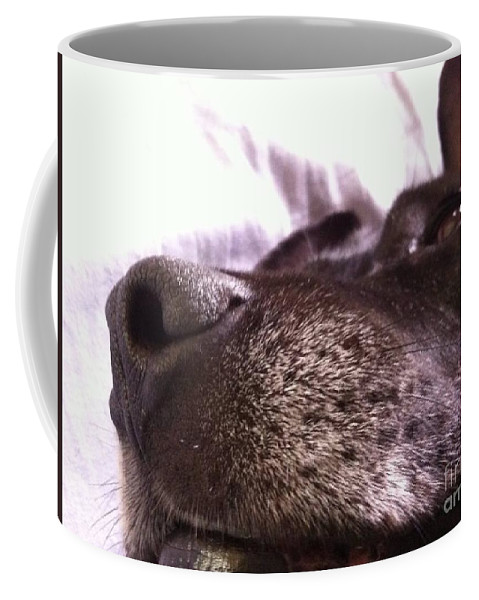 Dog Coffee Mug featuring the photograph My Dog Bud by Melissa Darnell Glowacki