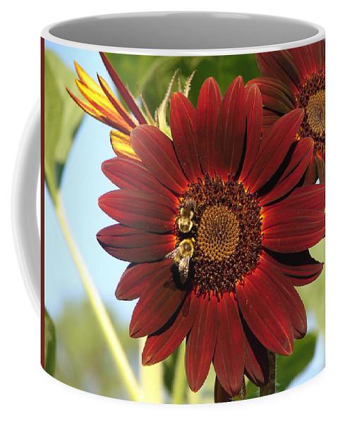 Flowers Coffee Mug featuring the photograph My Honey And Me by Katherine Sumpter