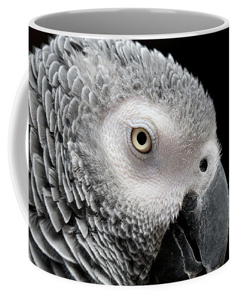 African Grey Parrot Coffee Mug featuring the photograph My Name Is Bogie by Betty LaRue