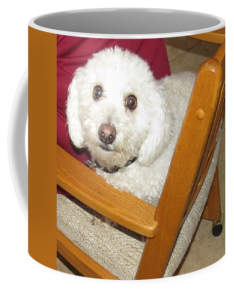 Pet Coffee Mug featuring the photograph My Name Is Sport by Carl Deaville
