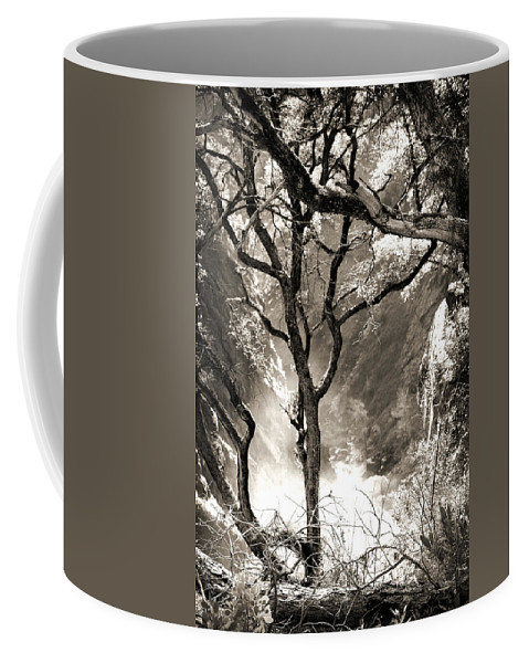 Feather Falls Coffee Mug featuring the photograph Mystic by Shawn McMillan