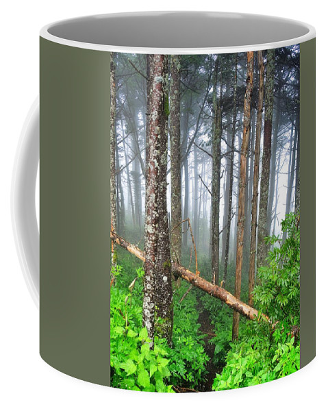 Mystic Coffee Mug featuring the photograph Mystic by Skip Hunt