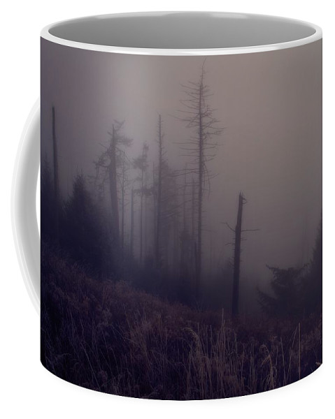 Mystical Morning Fog Coffee Mug featuring the photograph Mystical Morning Fog by Dan Sproul