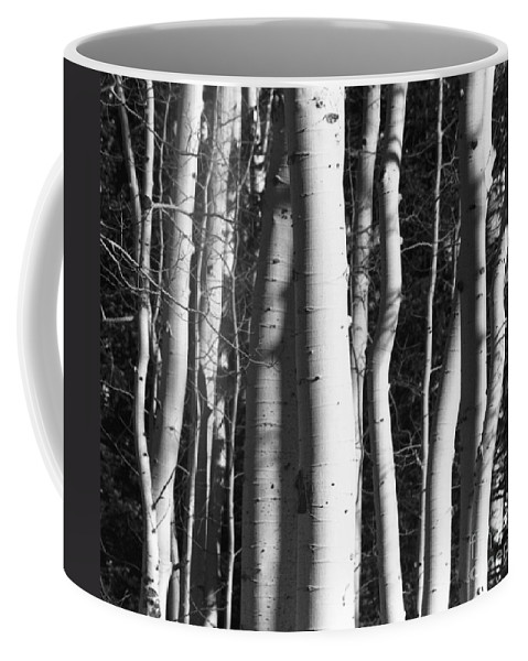 Black And White Coffee Mug featuring the photograph Mystick by Brandi Maher