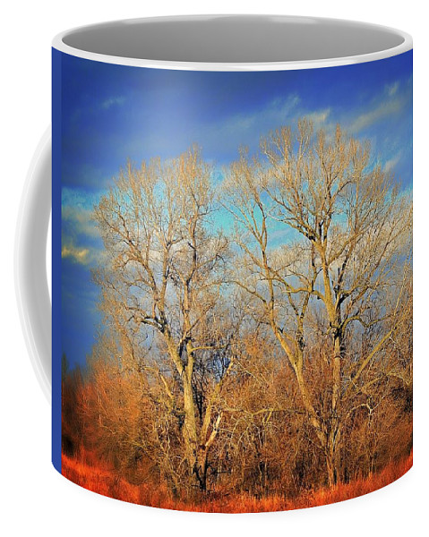 Wall Art Coffee Mug featuring the photograph Naked Branches by Marty Koch
