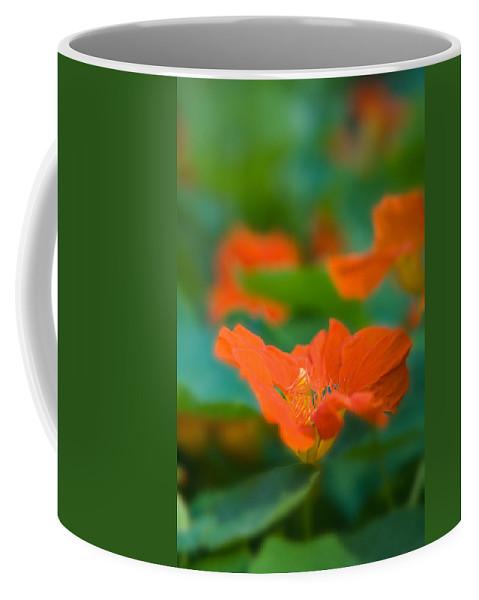 Cress Coffee Mug featuring the photograph Nasturtium by Ludwig Riml