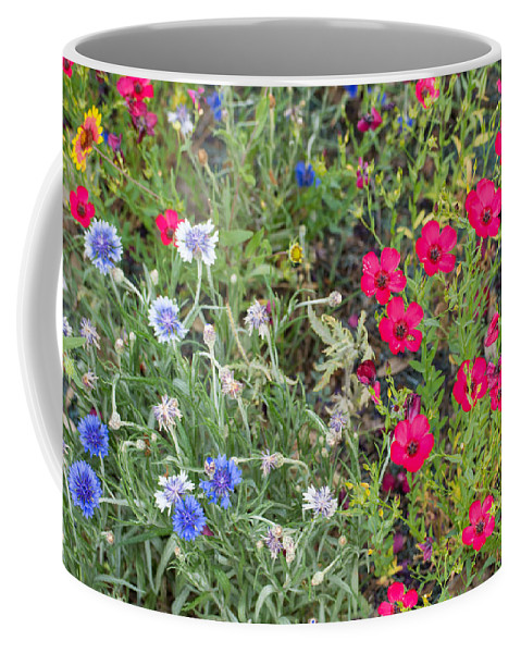 Cedar Park Coffee Mug featuring the photograph Cedar Park Texas Natural Tapestry by JG Thompson