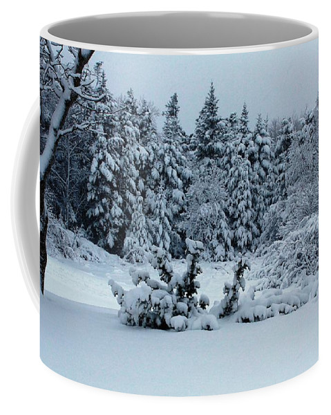 Natures Handiwork Coffee Mug featuring the photograph Natures Handywork - Snowstorm - Snow - Trees by Barbara Griffin