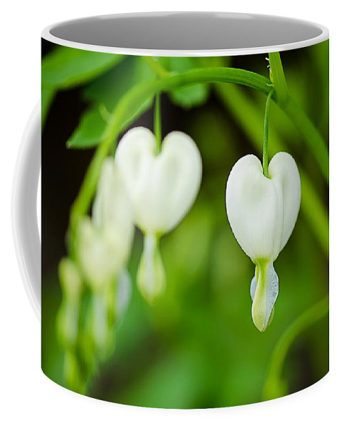 Heart Coffee Mug featuring the photograph Nature's Hearts by Shirley Tinkham
