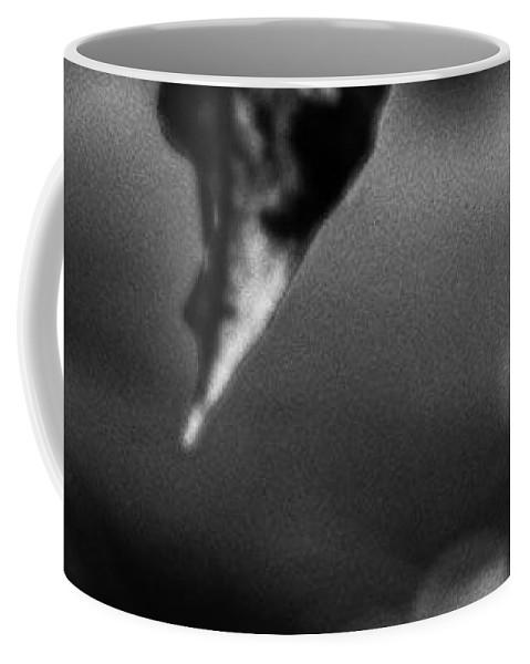 Landscape Coffee Mug featuring the photograph Natures Illusion by Bob Orsillo